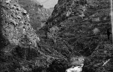 Ribeira de João Gomes vista do Pequeno Curral (atual Curral dos Romeiros), freguesia do Monte, concelho do Funchal- Segunda metade do Séc. XIX