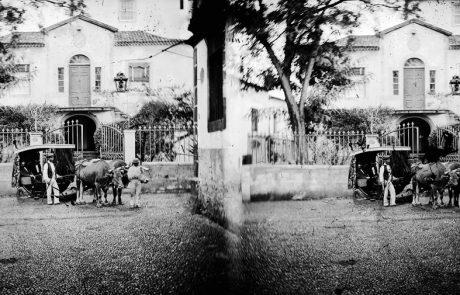 Carro de bois, na interseção da rua das Mercês com a rua dos Netos, freguesia de São Pedro, concelho do Funchal – Segunda metade do Séc. XIX