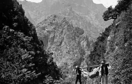 Transporte de rede num caminho da freguesia do Curral das Freiras, concelho de Câmara de Lobos – Segunda metade do Séc. XIX