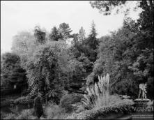 Jardins da Quinta da Cova (atual Quinta do Monte Panoramic Gardens), Freguesia do Monte, Concelho do Funchal