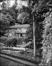 Jardins e fachada principal da Quinta da Cova (atual Quinta do Monte Panoramic Gardens), Freguesia do Monte, Concelho do Funchal