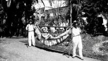 Ator britânico Terry Thomas numa rede, no jardim Municipal, Freguesia da Sé, Concelho do Funchal