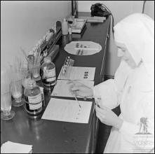 Enfermeira religiosa no laboratório do banco de sangue do Hospital da Santa Casa da Misericórdia do Funchal, Freguesia do Monte, Concelho do Funchal