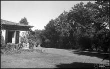 Relvado, zona florestal e parte do edifício da Quinta da Camacha, Freguesia da Camacha, Concelho de Santa Cruz