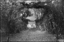 Quinta do Serrado das Ameixieiras ou Quinta Acciaiuolli, Freguesia do Santo da Serra, Concelho de Santa Cruz