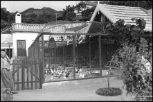 Pombal da Quinta Elmina (atual Lar Vila Assunção), Freguesia de São Gonçalo, Concelho do Funchal
