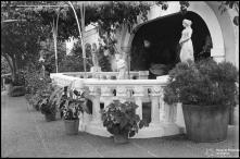 Pormenor da Quinta Elmina (atual Lar Vila Assunção), Freguesia de São Gonçalo, Concelho do Funchal