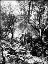 Retrato de um homem, uma mulher, um jovem e uma jovem, em ambiente florestal, em local não identificado