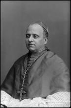 Retrato de D. Manuel Agostinho Barreto, bispo do Funchal (meio corpo)